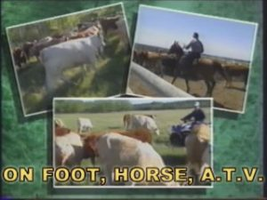 StockDoctor II™ Administered On Foot, Horse or A.T.V.