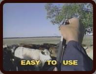 Easy To Use StockDoctor II™
